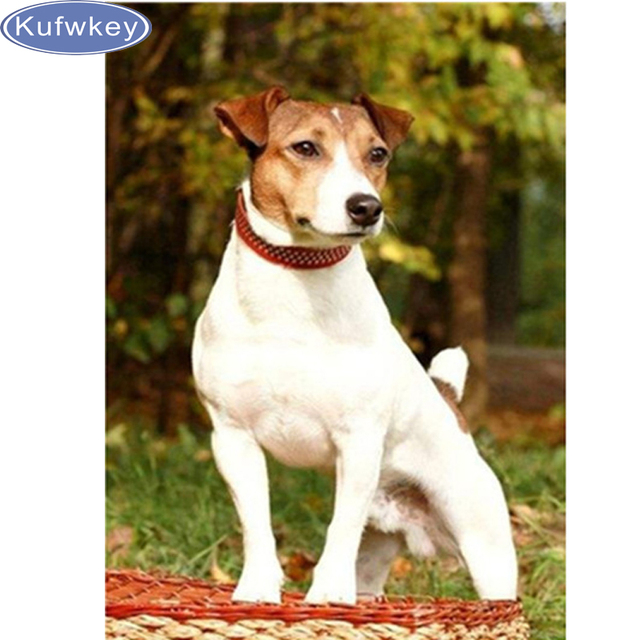 Piena ricamo diamante animale jack russell terrier cane 5 pittura
