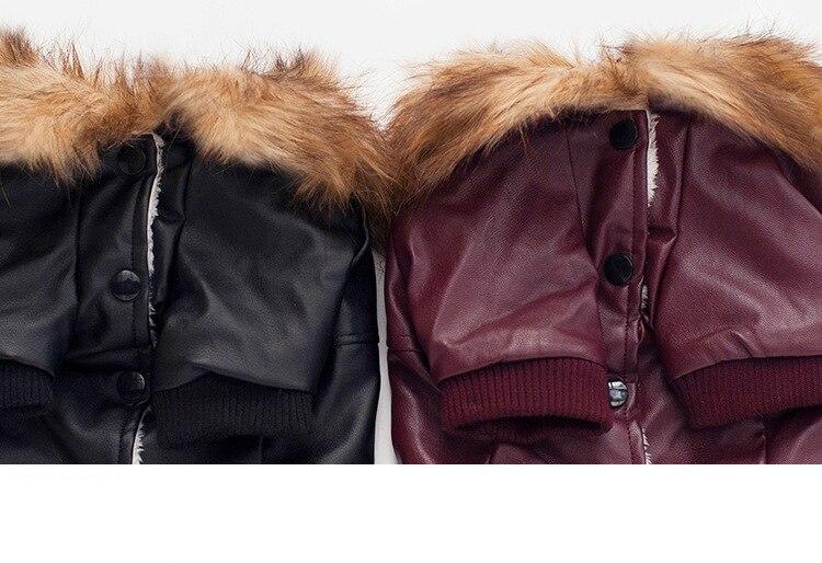 Cute Fur collar Dog Leather Jacket | DogsMall-International