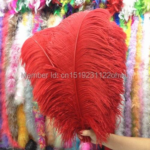Rossa naturale piume di struzzo 45 50 cm/18 inches to20 50 pz piuma dello struzzo per le decorazioni di nozze di alta qualità plume-in Piuma da Casa e giardino su  Gruppo 1