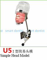 Good Quality Simple Head model Apply to the oral cavity simulation training fixed on the dental chair for any position practice