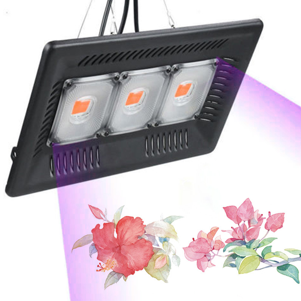 Led Grow Light Full Spectrum 100W 200W 300W IP67 COB Grow LED Flood Light For Plant Indoor Outdoor Hydroponic Greenhouse