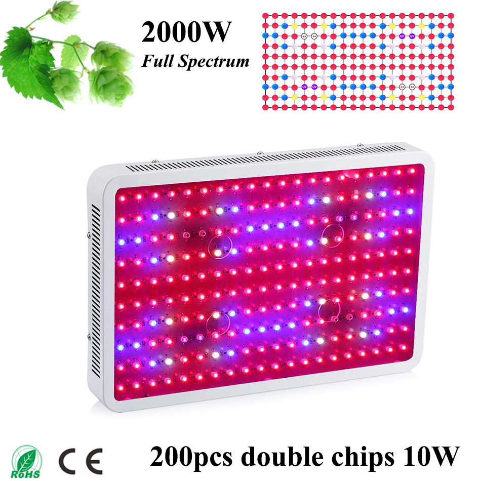 Grow light for houseplants - Fitolampa Double Chips Led Plant Grow Light 2000w 1200w 900w 300w 600w 10w Full Spectrum Led Plant Lamp For Green House Plants