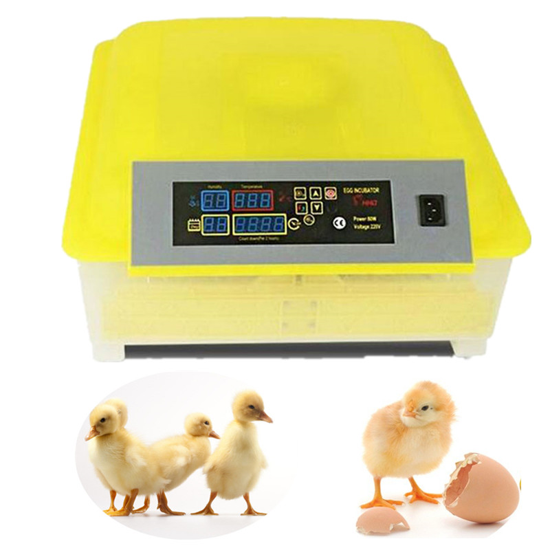Cheap Price Poultry Machine48 Digital Temperature Full Automatic Egg Incubator hatcher for Chicken Duck Quail Parrot chicken egg incubator hatcher 48 automatic mini parrot egg incubators hatcher hatching machines