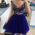 Royal Blue Short Homecoming Dresses 2017 New Pearls Beaded Lace Short Party Graduation Dresses See Through Cocktail Dresses