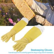 2шт пчеловодческие перчатки из белой овчины, толстые холщовые перчатки с защитой от укусов, утолщенное оборудование для пчеловодства, guantes apcultura