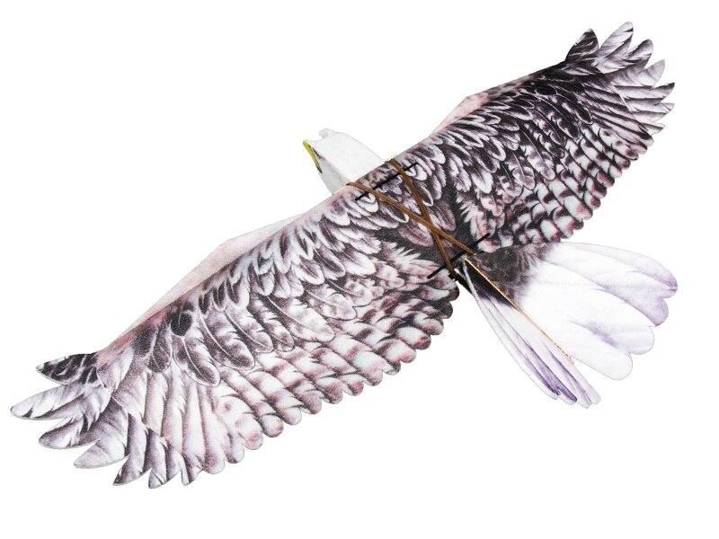 RC avion EPP avion modèle Mini aigle RC envergure 1200mm aigle EPP lent Flyer