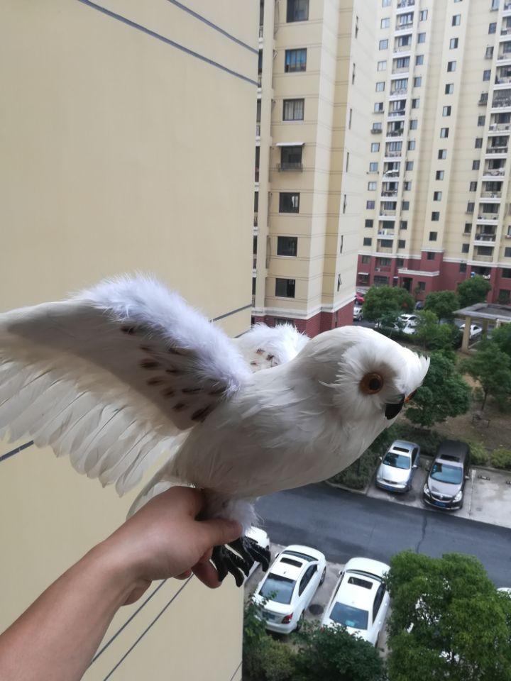 large 32x60cm simulation owl bird hard model prop polyethylene&white feathers spreading wings owl ,home garden decoration s2841