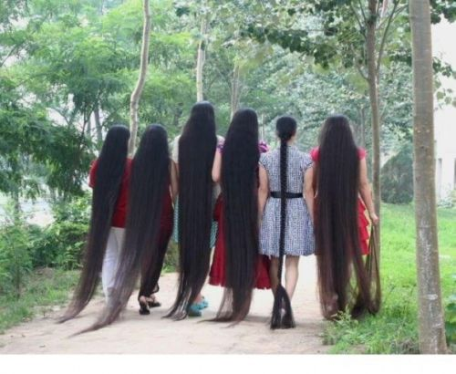 Long Hair Fast Growth Herbal Oil Helps Your To Lengthen Grow Longer