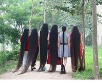 Long Hair Fast Growth Herbal Hair Oil helps your hair to lengthen grow longer Free Shipping