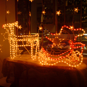 Image 3 - 防水クリスマス屋外ガーデン led ストリング祭ウェディングパーティーの装飾照明ランプ新年ホース柔軟なロープライト