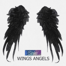 1Pair 3d Angel Wings Patches For Clothes Sewing on Embroidered Patch Motif Applique Clothing Accessories Diy Black White ZC51