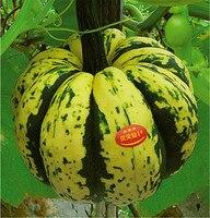 Original package 80pcs BEIBEI pumpkin seeds, very beautiful green squash seeds,pumpkin fruit Seeds for planting
