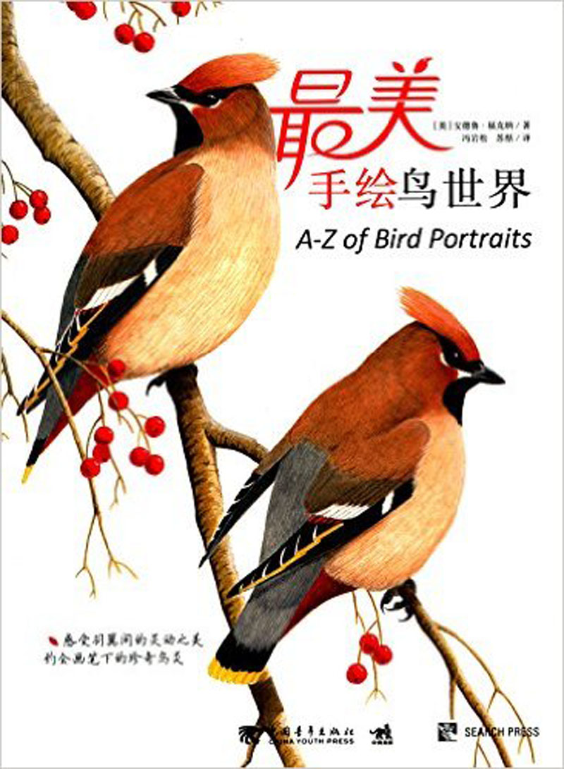 The most beautiful hand-painted bird world chinese art painting and drawing book art forms of nature chinese art painting and drawing book