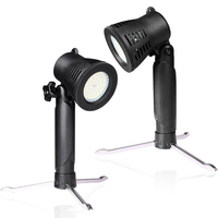 2 PCS Photo Studio LED Small Light 3200K Or 5600K Desktop Photography Shooting Portable Hand Lamp With a Background Cloth