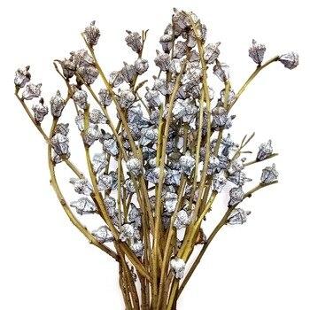 Ramo de flores de fruta de eucalipto global Natural seco, 20 pulgadas de altura, ramo de goma azul