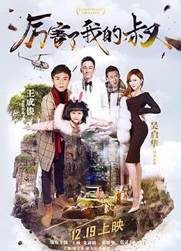 《厉害了我的叔》2017年中国大陆剧情,喜剧,爱情电影在线观看