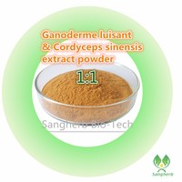 Free Shipping Natural Wild Ganoderme Luisant Lingzhi Mushroom Extract And Cordyceps Sinensis Extract Compounded Powder 1kg