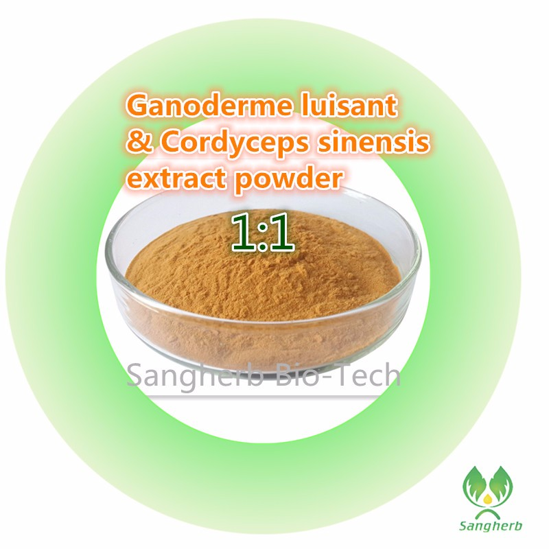 free shipping natural wild Ganoderme luisant / Lingzhi mushroom extract and Cordyceps sinensis extract compounded powder 1kg 300counts x agaricus bisporus extract 30% polysaccharide powder 500mg free shipping