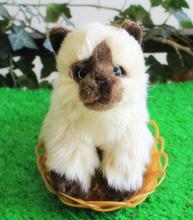 Simulation Siamese Cats Plush Kids Toys Pet Toy Cute Cat West Baby Gifts