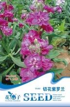 Цветок фиолетовый Семена, оригинальная Упаковка 30 зерна/мешок Сад бонсай семена цветов, легко Расти Matthiola тсапа