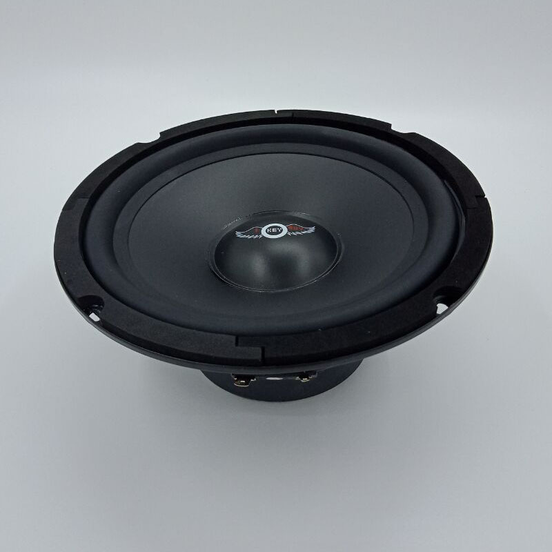 US $20 24 19% OFF|8inch 8ohm HiFi Stage Ktv Speaker 400Watts Subwoofer  203mm Diameter Good Sound Quality Home Theater Audio Louder Speakers on