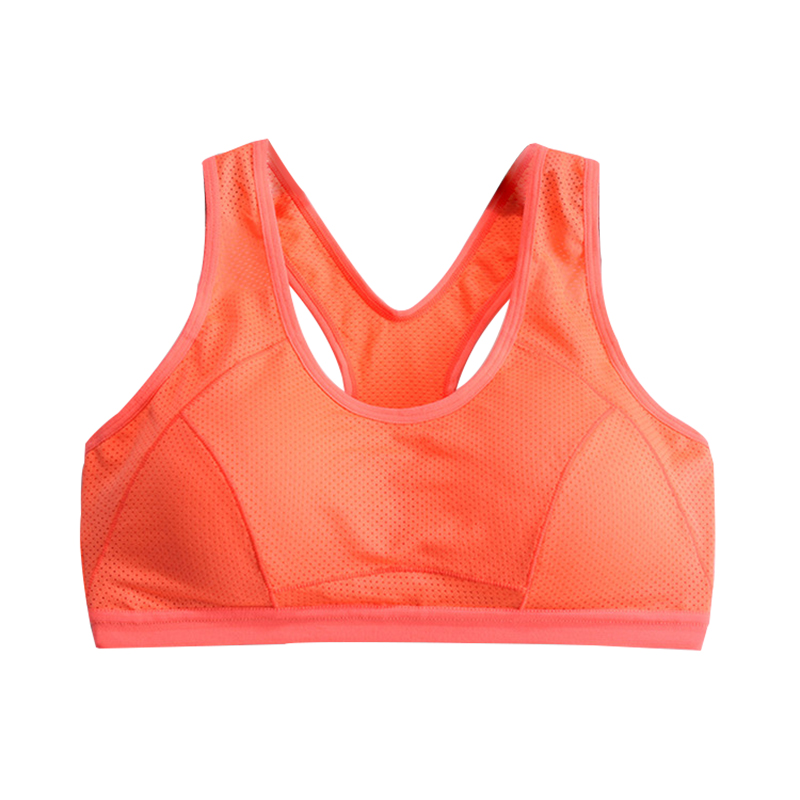 Ladies Seamless Sports Bra Push Up Padded Breathable -8575