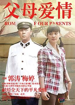 《父母爱情》2014年中国大陆爱情,家庭电视剧在线观看