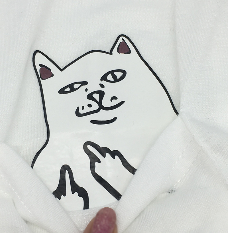 cat with middle finger