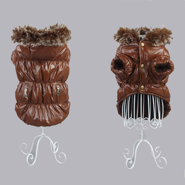 Winter Dachshund Jacket