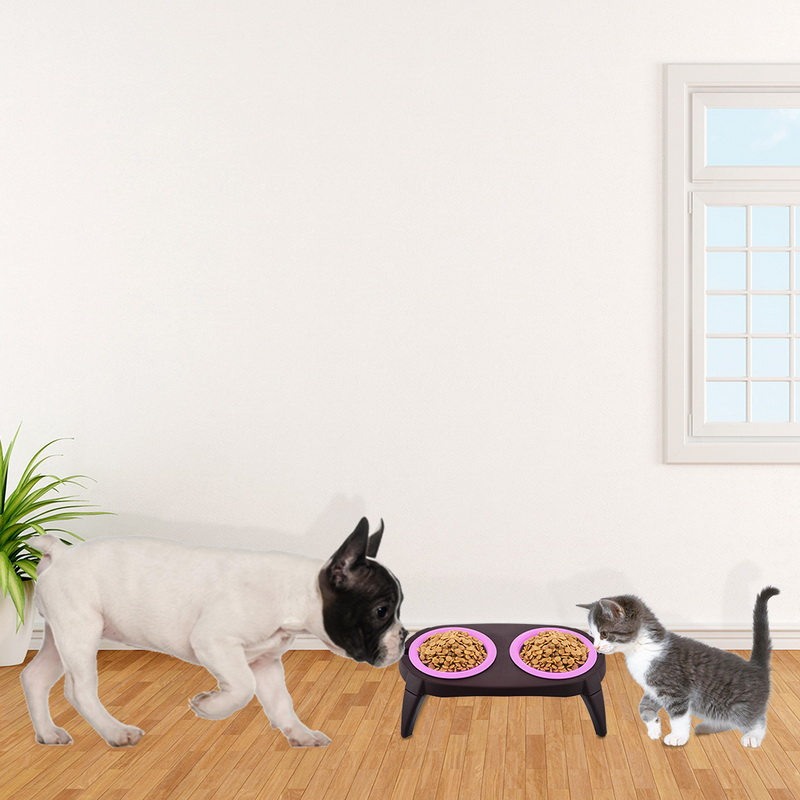 Dishes, Feeders & Fountains Temperate Gamelle Et Son Tapis Pour Chien Products Hot Sale Cat Supplies
