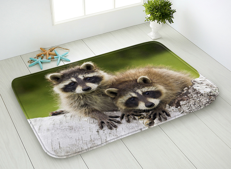 40x60cm/45x75cm Kids Room Doormat Anti Slip Bathroom Floor Mat Rug and Carpet