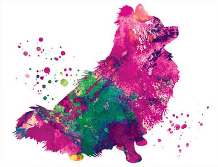 5d Diy Diamond Embroidery Watercolor Dog Pomeranian 3d Diamond