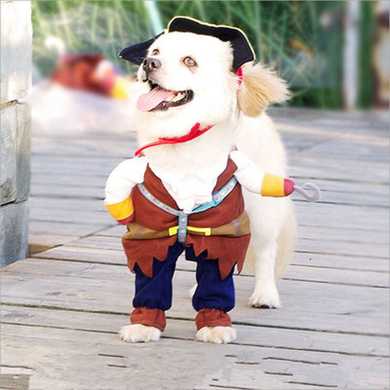 Pirate Dogs Halloween  1