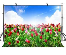 7x5ft Colorful Tulips Backdrop Lush Tulip Beautiful Photographic Background and Studio Photography Props
