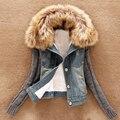 Das 2016 mulheres novas de inverno curto denim jacket engrosse inverno fio fino grande gola de pele de cordeiro algodão denim outerwear LY1706