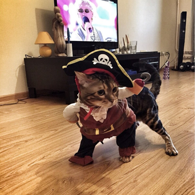 Funny Cat Costume Pirate Suit Cat Clothes Corsair