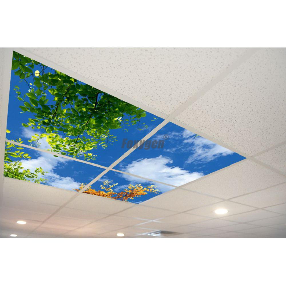 Us 90 0 Interior Decor Materials Digital Printed And Uv Printing False And Suspended Ceiling Pop Ceiling Pvc Stretch Ceiling Film In Wallpapers From