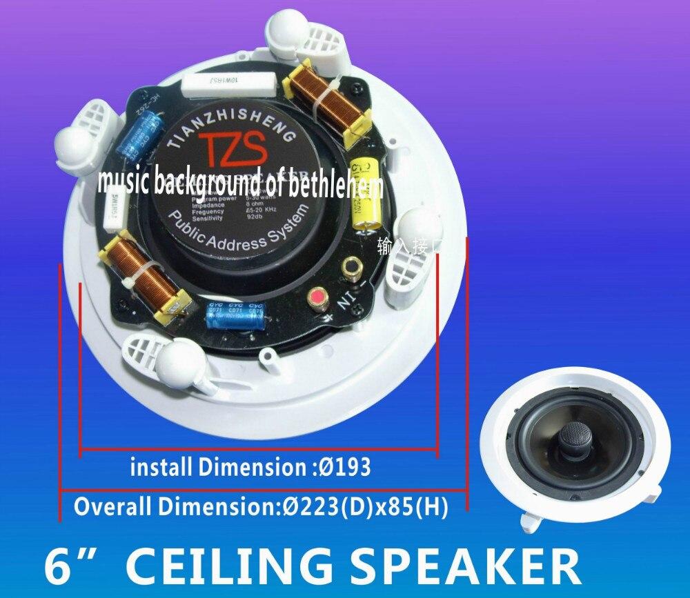 Earthquake Sound 6 Powered 2 Way Monitor Pa Speaker Wall