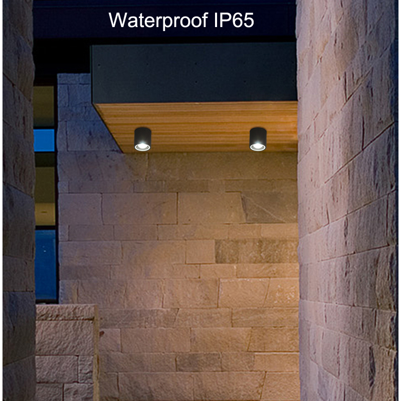 Modern LED Ceiling Lights Spot lamps LED Lighting for Bathroom lamp foyer Outdoor porch ceiling light with GU10 bulbs lamp
