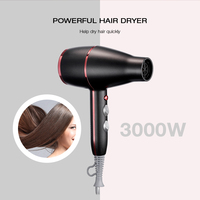Guowei GW 6523 3000W Hair Dryer 2 Speed 3 Heat Setting Hanging Loop Airflow Concentrator Nozzle Hot Cold Wind Salon Tool