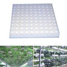 100 шт., безвлажные гидропоники для овощей, горшки для питомцев, губчатая система для выращивания воды, для домашнего сада, экологически чистые