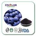 Alta calidad polvo de extracto de baya acai en polvo concentrado de colesterol natural envío libre 500g