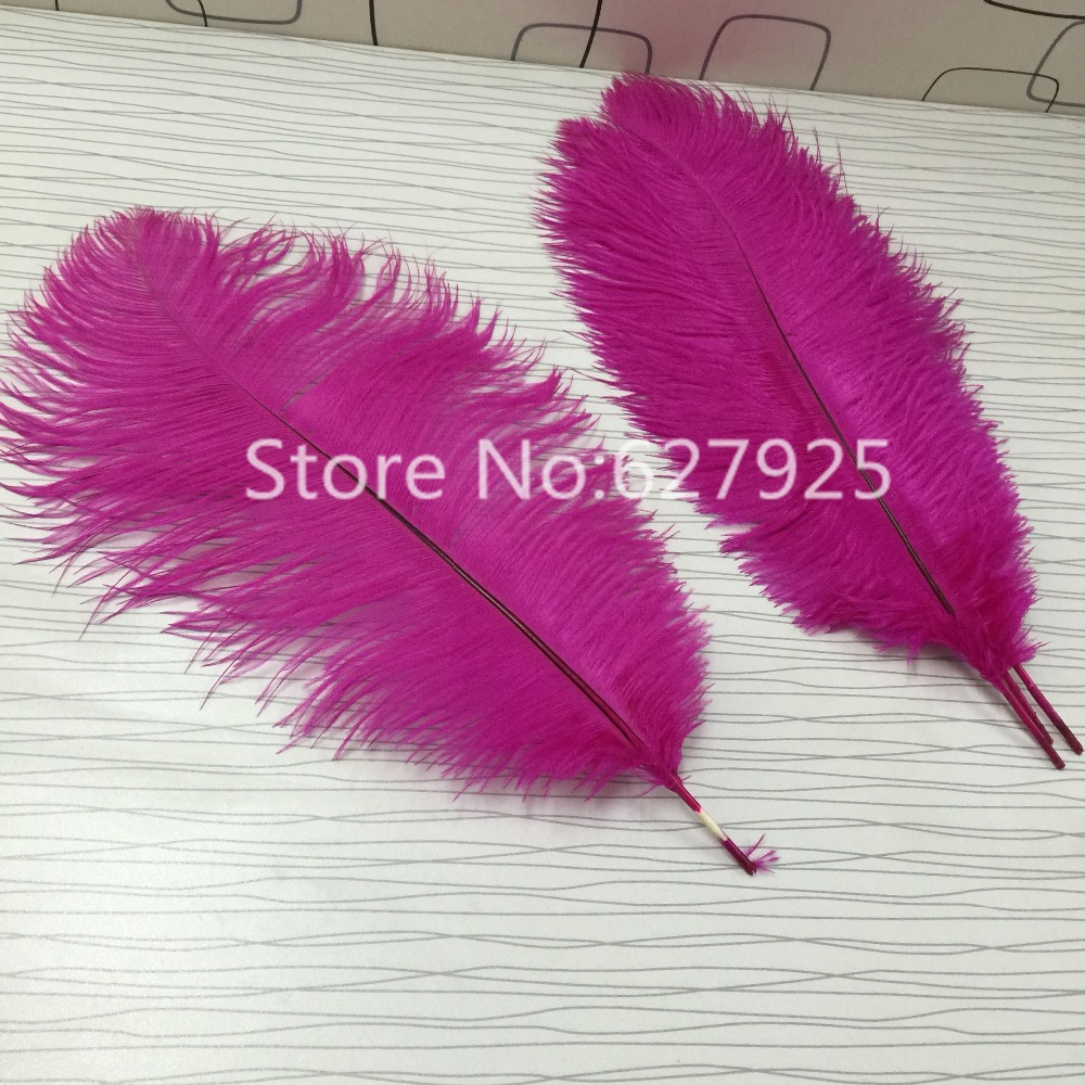 Wholesale Feather 50pcs/Lot 16 18inch Fuchsia Ostrich Feathers ...