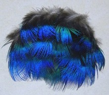 Hot sale! 100pcs/Lot Approx 5cm  Blue Peacock Plumage Feathers Free shipping цена