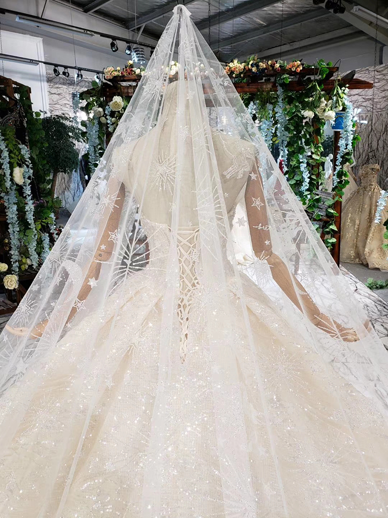 HTL388 boda special strapless wedding dress with wedding veil sleeveless sexy princess bridal dresses shiny robe de mariage 2019 (6)