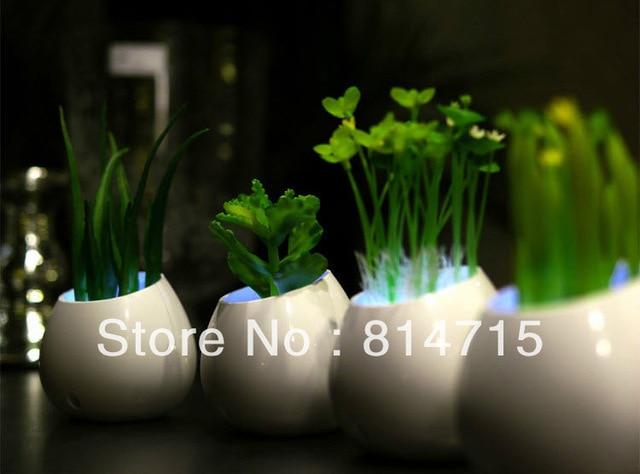 Wholesale LED Night Light Free Shipping