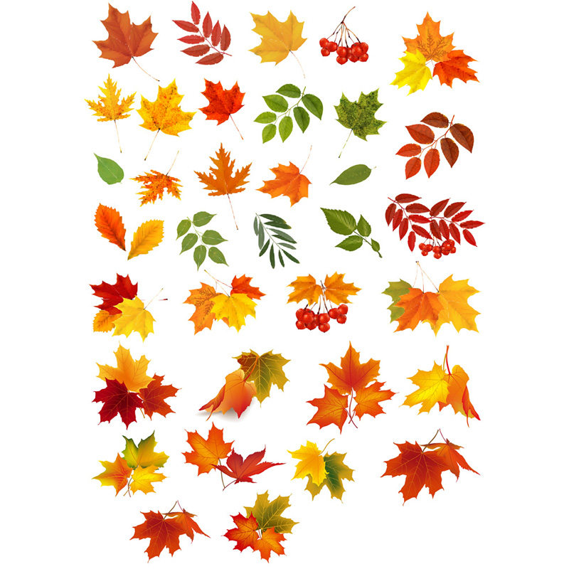 2 Pcs/lot Red Maple Leaves Decor Mohamm Planner Diary Sticker Pack Post It Notebook Agenda Bullet Journal Stickers Scrapbooking