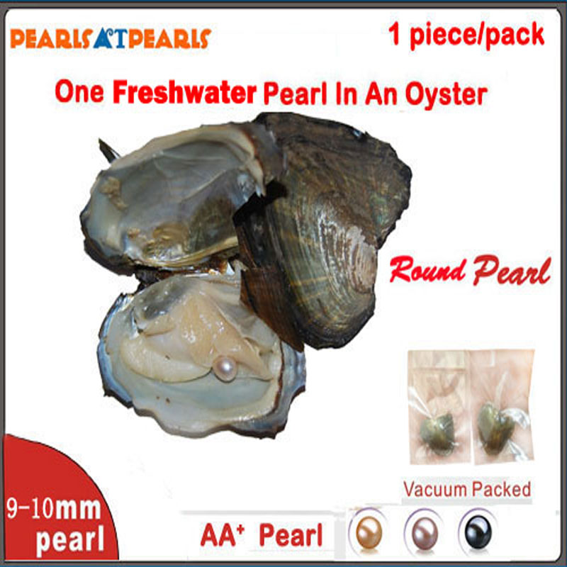 50pcs 9-10mm Single AA+ Round Pearl with Individually Vacuum Packed Oyster Fresh Water Pearl in Oyster