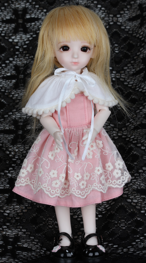 Free Shipping 1/3 1/4 1/6 BJD SD Doll Dress Clothes Fashion Dress With Lace For Girls Toy Gift Doll Accessories цена и фото