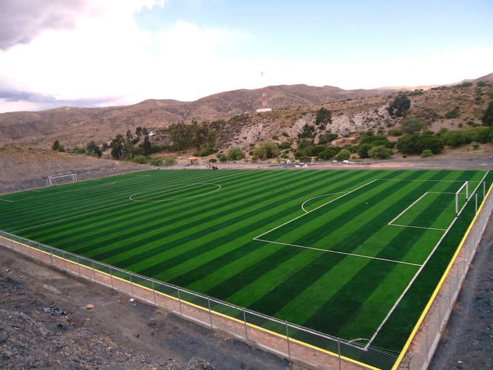 best quality synthetic grass soccer price